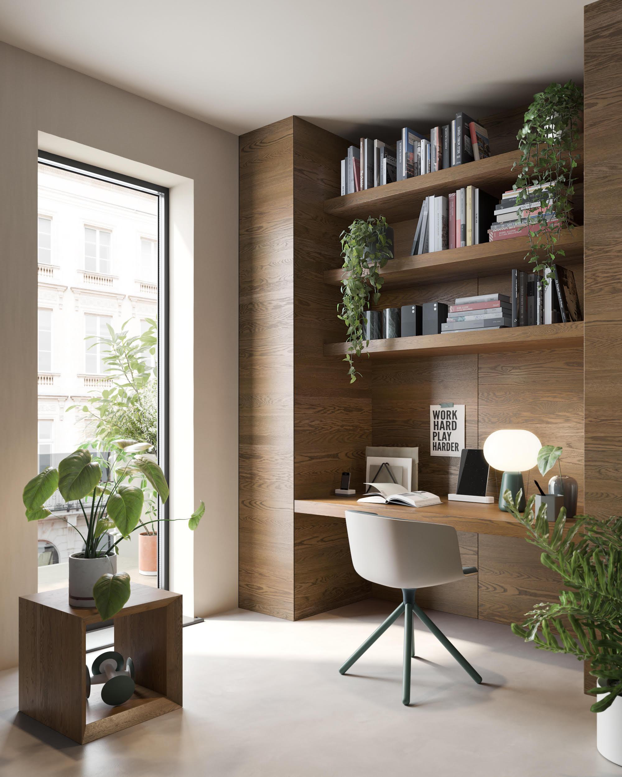 Piante Eleganti Da Appartamento piante da appartamento: come scegliere le più eleganti